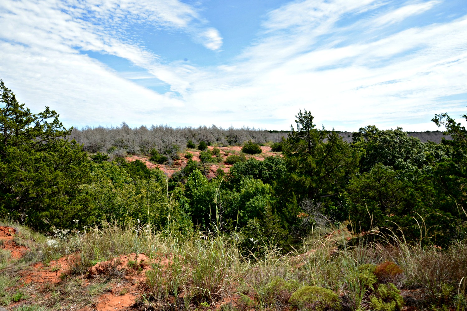 Red Rock Canyon State Park | Oklahoma