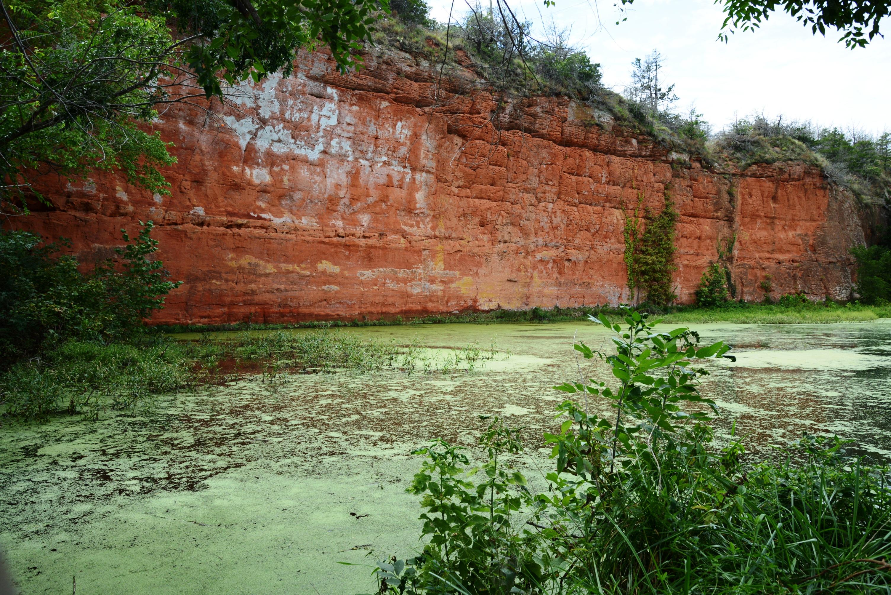 Marsh at Red Rock Canyon
