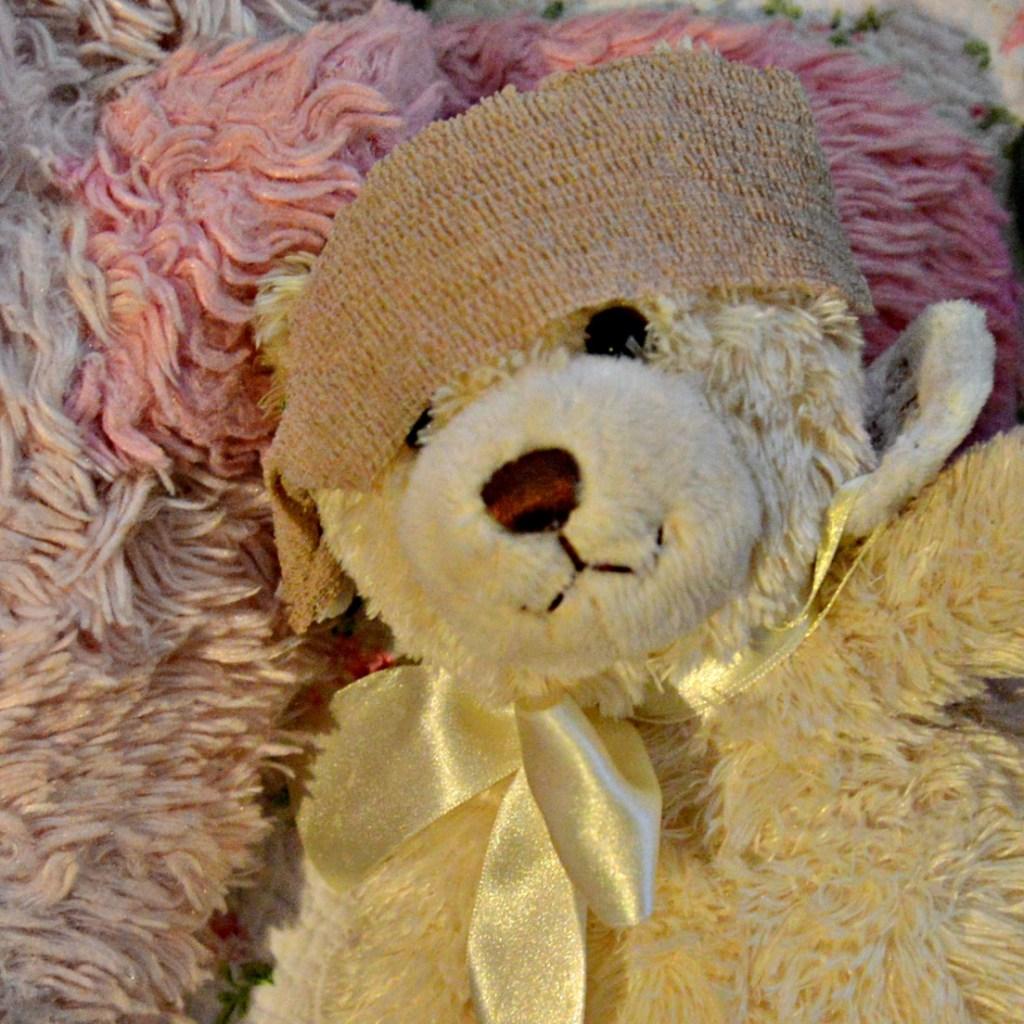Stuffed Animal Head Injury