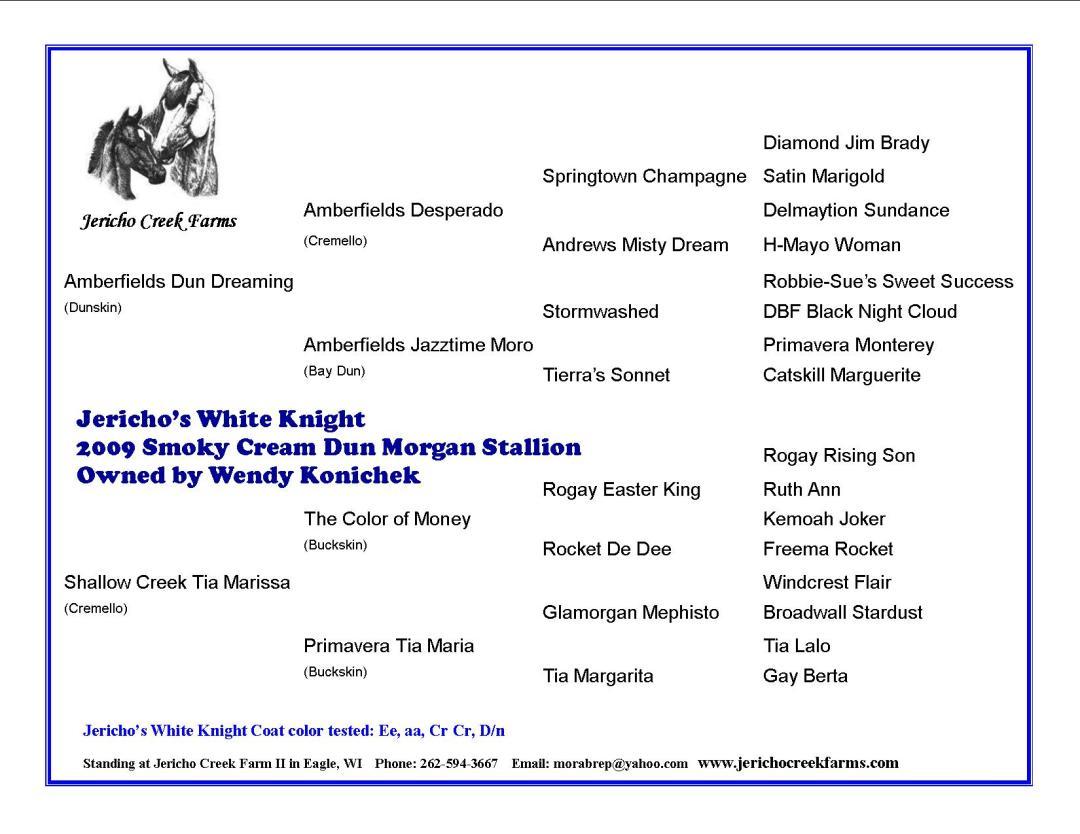 Jericho's White Knight Morgan stallion pedigree