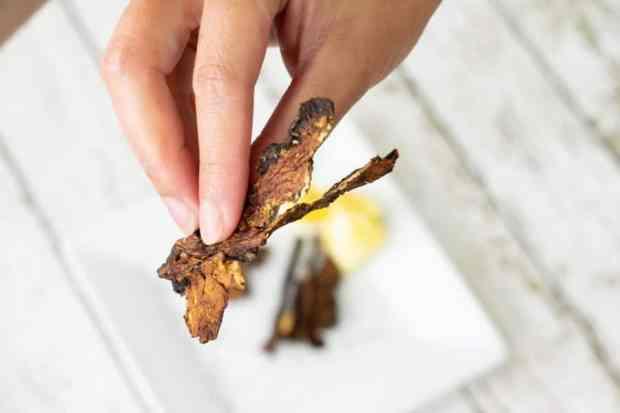 Broken piece of mushroom jerky