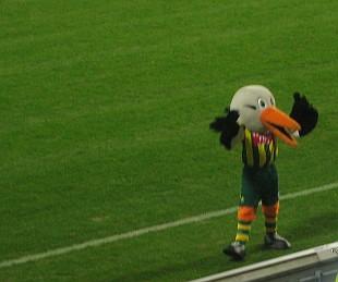 vreemde-vogel