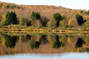 Chittening-reflection
