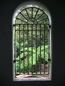 Window Grate - Puerto Rico