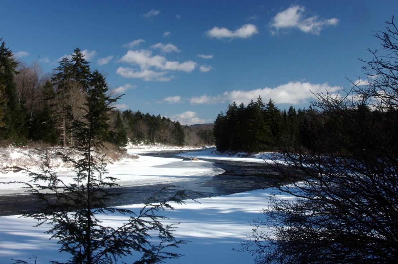 Moose River Plain