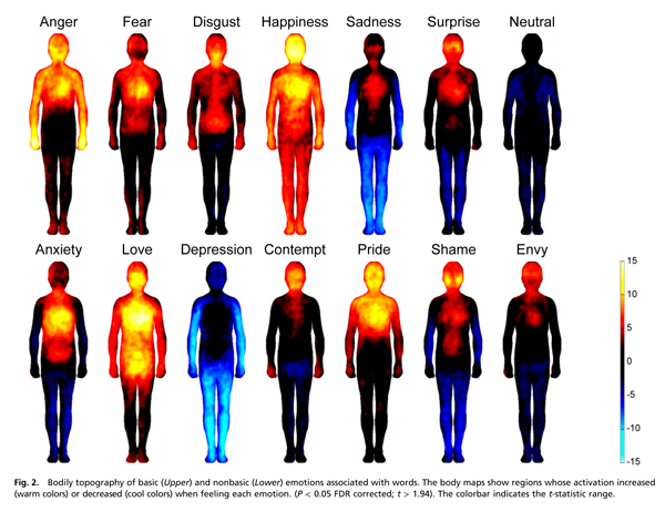 how emotional sensation looks in the body