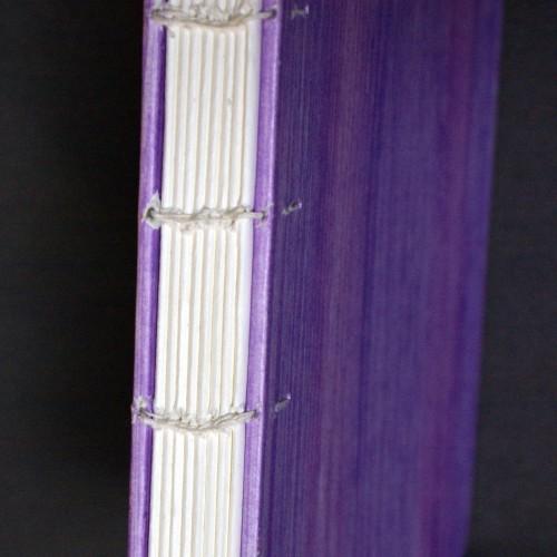 Coptic binding - spine