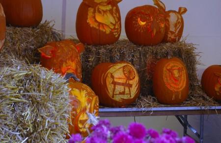 Rhinebeck 2009 - Pumpkins
