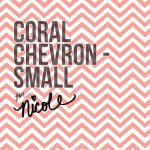 Small Coral Chevron