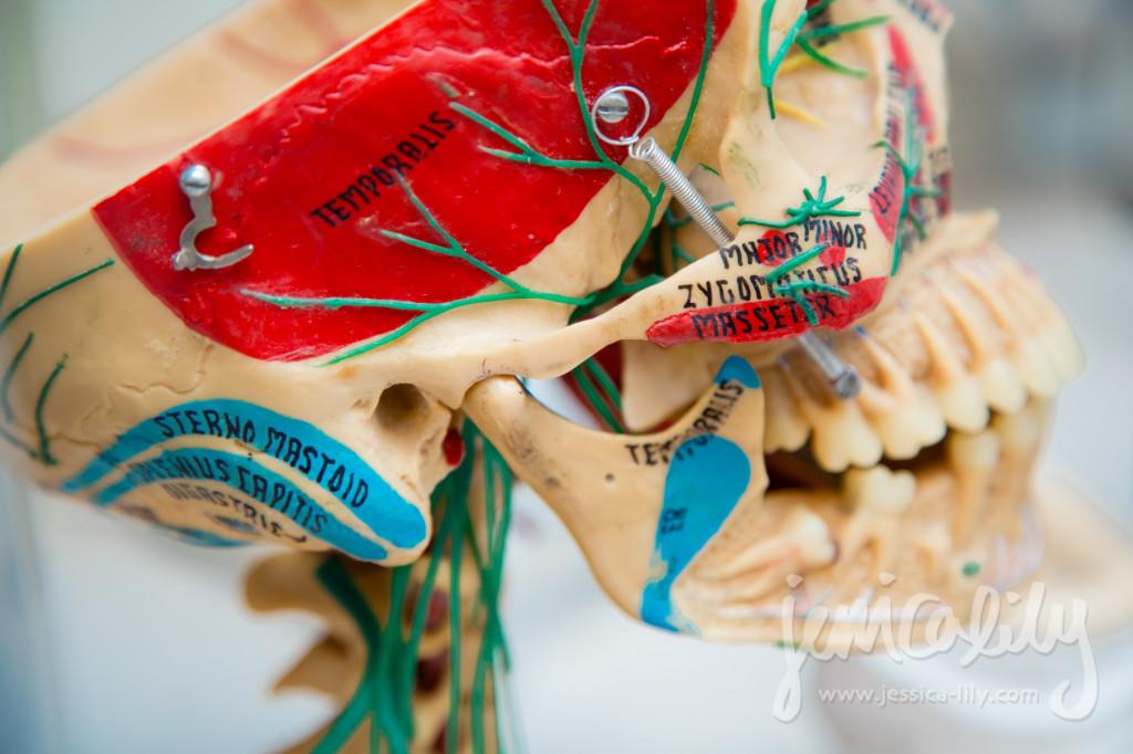 Atlanta Dentist Portraits with Jessica Lily and Dr. David G Jones, TMD Specialist