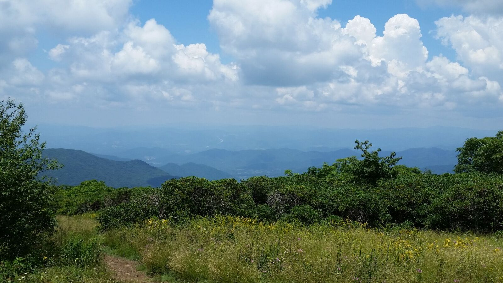 Craggy Gardens Trail. Vacation in Asheville, NC