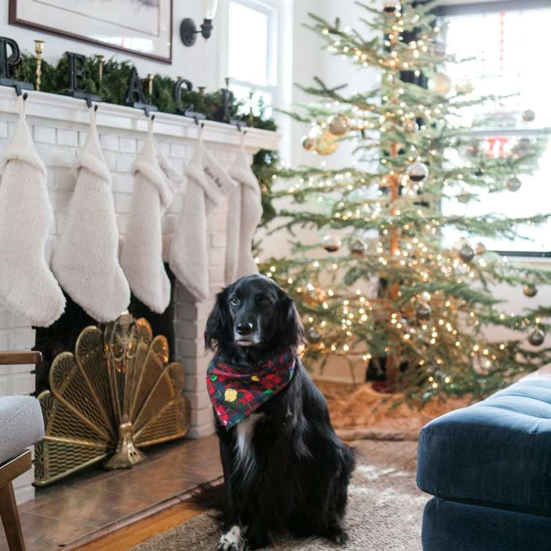 Eclectic Home Tour Winter 2017 | Boho Glam Christmas Decor | Jessica Brigham Blog | Magazine Ready for Life