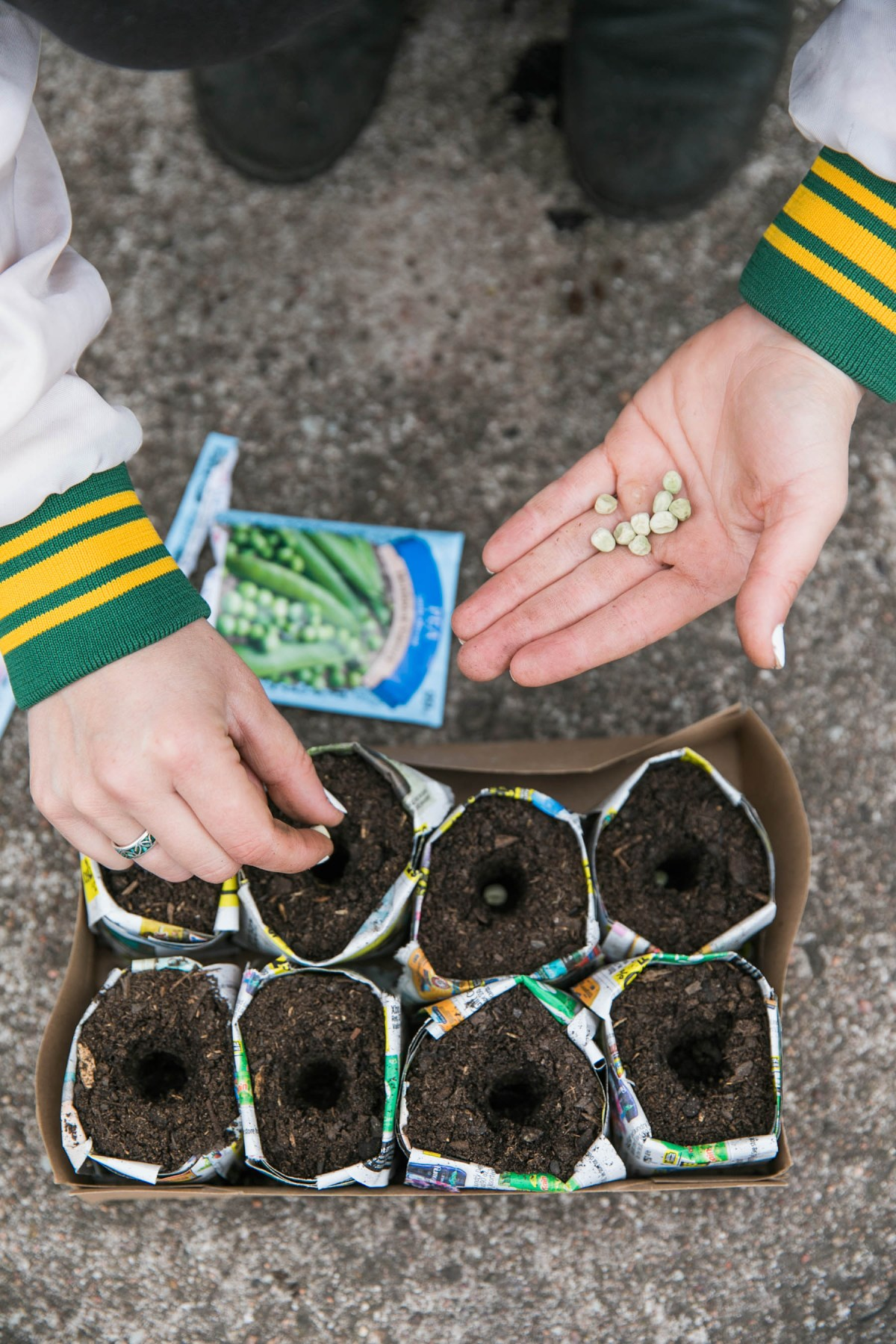DIY Paper Pots for Garden Seedlings | Vegetable Gardening | Seed Prep | JessicaBrigham.com