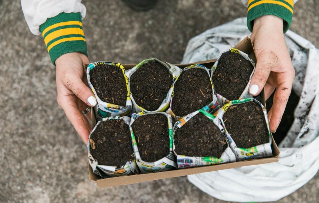 DIY Paper Pots for Garden Seedlings