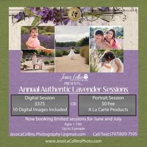 Santa rosa, photographer, Lavender field, Photography, child photographer