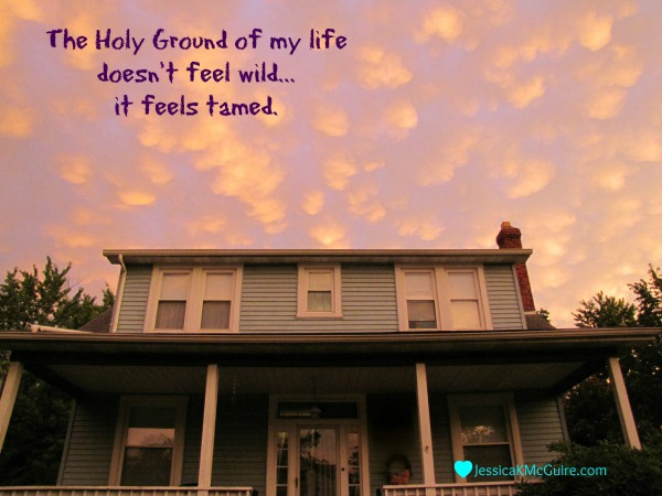 holy ground of life feels tamed