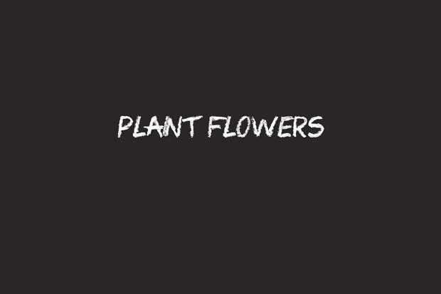 family-night-ideas-flowers
