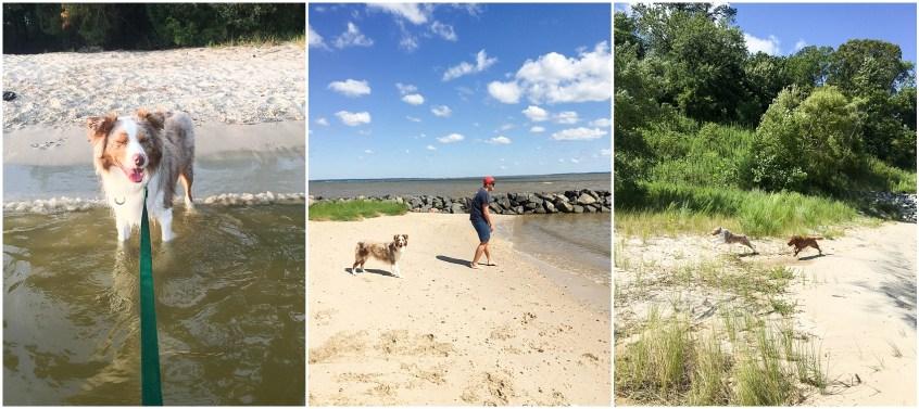 sundays of summer a newlyweds personal blog post