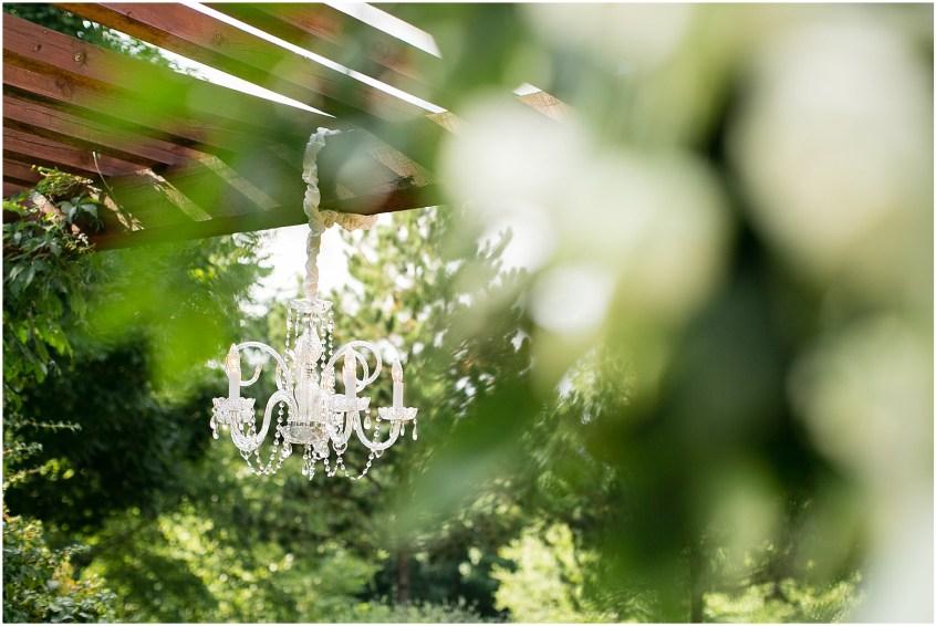 house mountain inn wedding lexington Virginia, wedding ceremony, lighting professors,