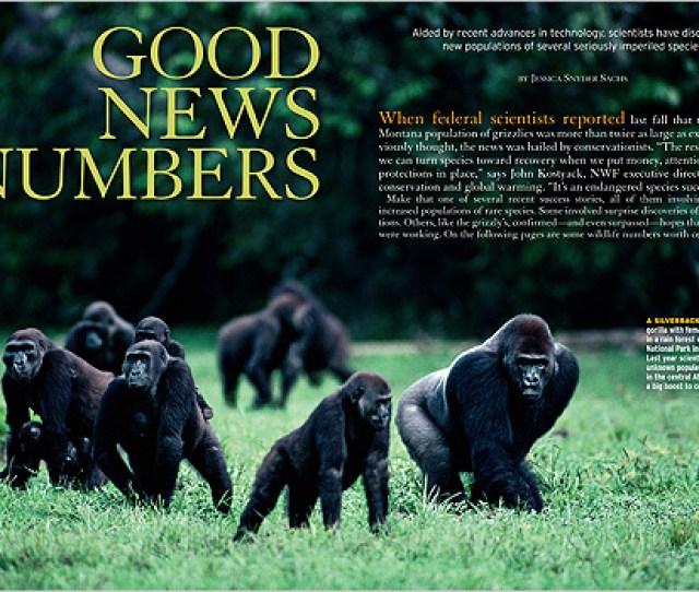 Good_news_numbers_on09_1 Jpg