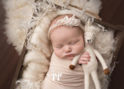 Hampton Roads VA Newborn & Baby Photography