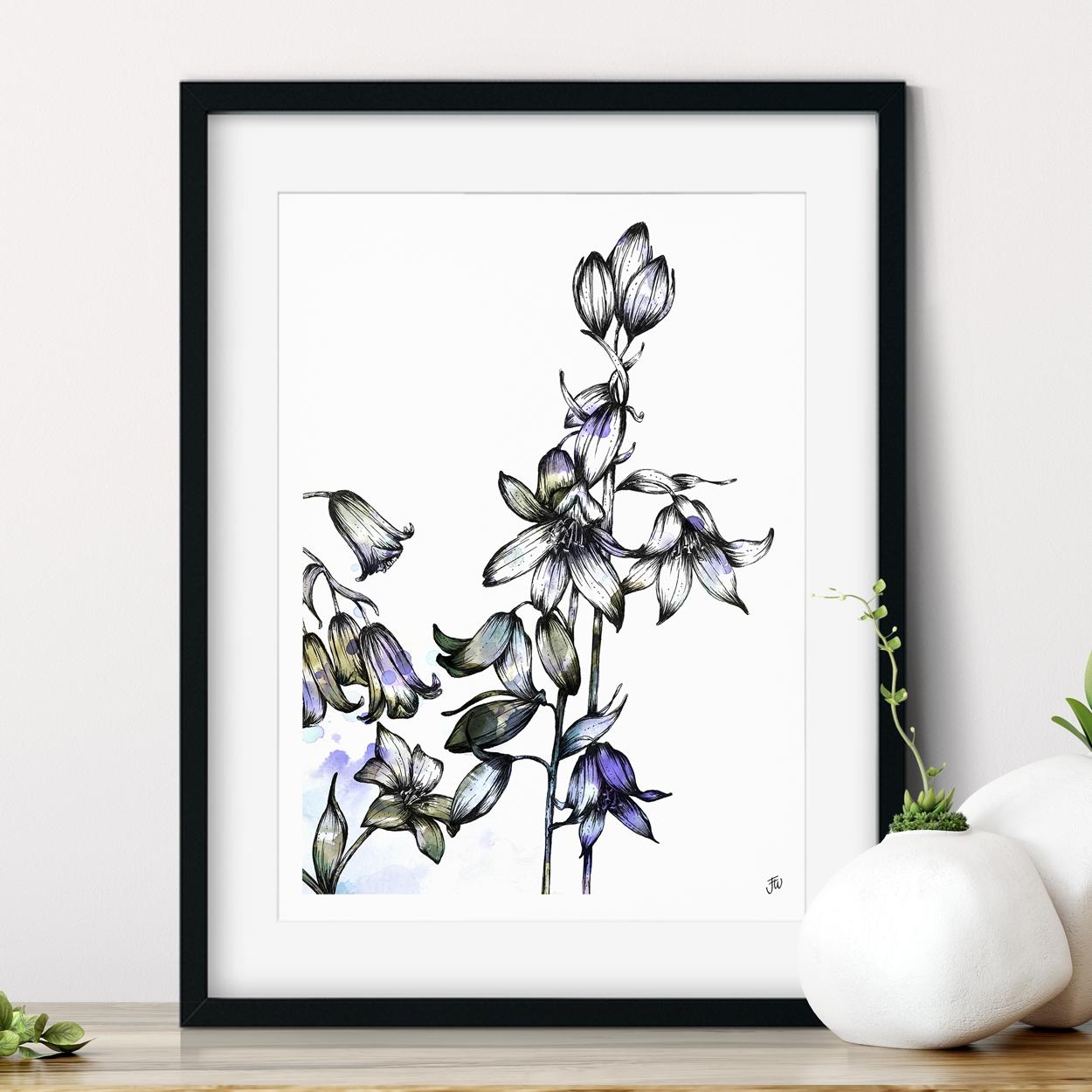 Bluebell floral illustration