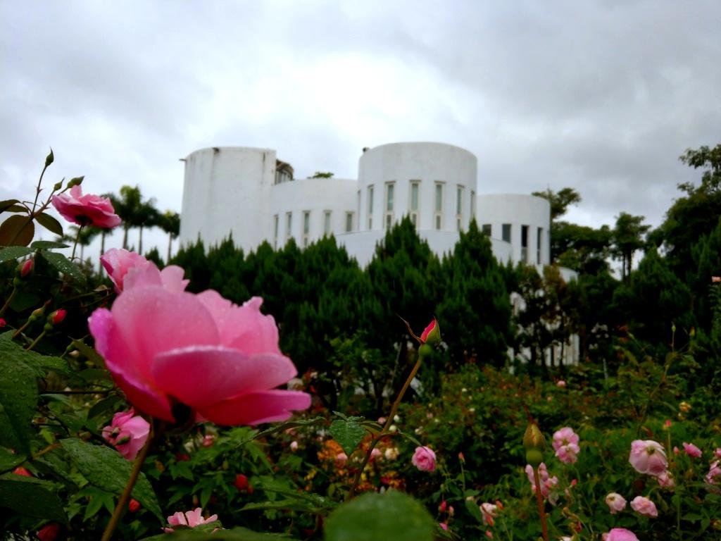 【台北】台北玫瑰園