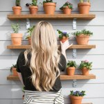 Diy Plant Shelving Wall Succulents Plant Wall Outdoor Plant Shelves
