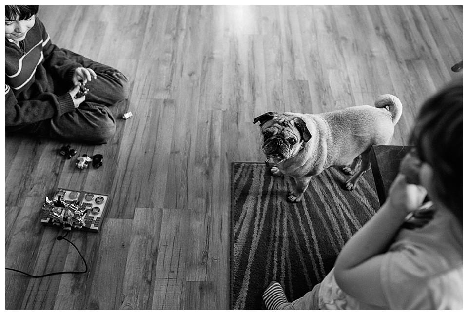 Tacoma Family Photographer_0338