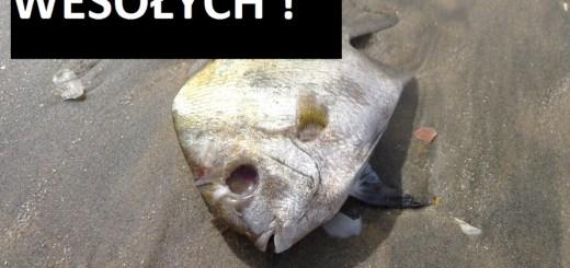 wesołych świąt martwa ryba (2)