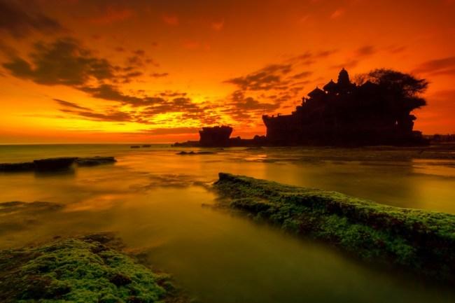 Bali 68