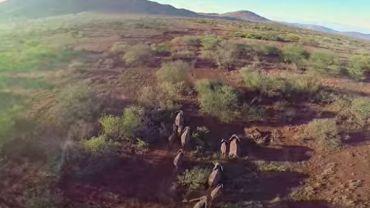 Zapierające dech w piersiach piękne krajobrazy Serengeti