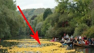 Wielka żółta plama na rzece Necker w Niemczech! Nie uwierzysz, co to takiego!