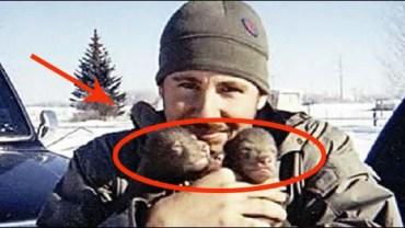 Ten mężczyzna znalazł te maluchy przy zmarłej matce i postanowił zabrać je ze sobą. Zobacz, co z nich wyrosło!