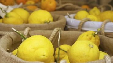 9 dobroczynnych zastosowań cytryny, o których nie mieliście pojęcia…