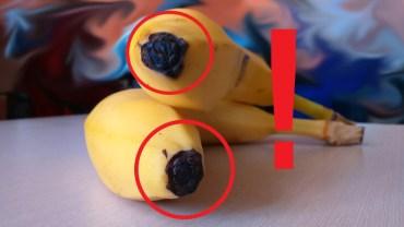 Co kryje się w końcówce banana? Obalamy mity i sprawdzamy fakty!