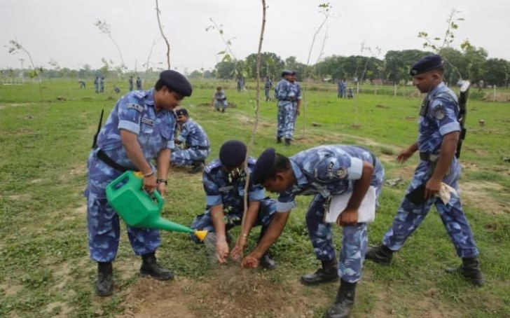 planting-trees-in-india-4