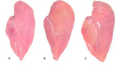 Białe prążki na piersi z kurczaka. Jeśli je zobaczysz na mięsie, lepiej nie kupuj takiego drobiu!