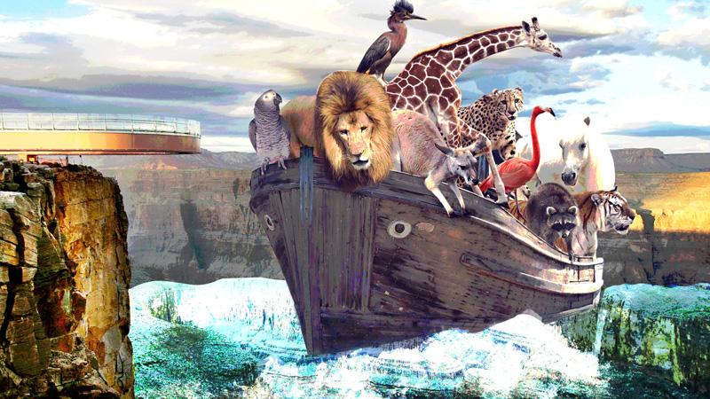 Wielki Kanion w Kolorado dowodem na to, że historia Arki Noego była prawdziwa? Naukowiec Andrew Snelling jest o tym przekonany!