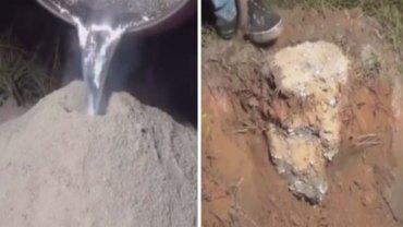 Wlał roztopione aluminium do opuszczonego mrowiska. Po kilku godzinach wyciągnął coś zaskakującego