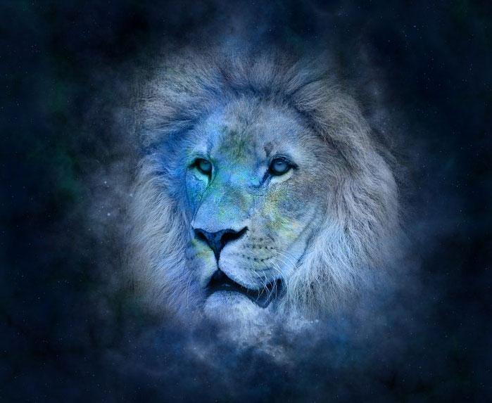 Nikt nie jest idealny, również osoby urodzone pod znakiem króla zwierząt. Sprawdźcie, jakie są główne wady zodiakalnych lwów