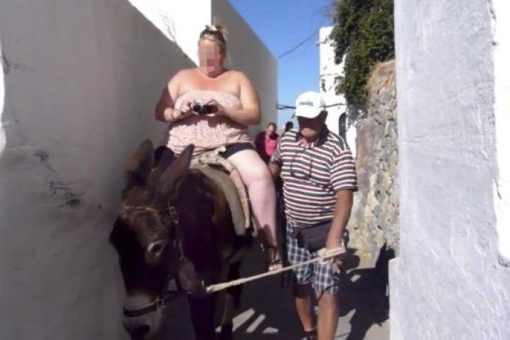 Zabroniono grubym turystom jeździć na osłach! Zwierzęta nie były w stanie transportować takiego ciężaru w 30-stopniowym upale