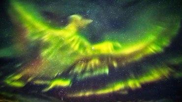 Nad Islandią pojawiła się zorza w kształcie Feniksa. Ludzie na chwilę wstrzymali oddech!