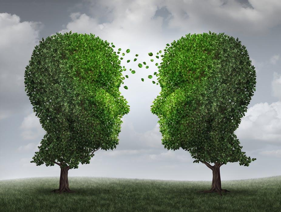 Drzewa potrafią się przytulać, kochać i dbać o siebie nawzajem! Odkrycia naukowców są piorunujące