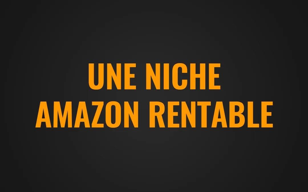 Comment trouver une niche Amazon rentable en quelques clics ?