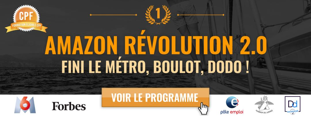 amazon revolution 2.0