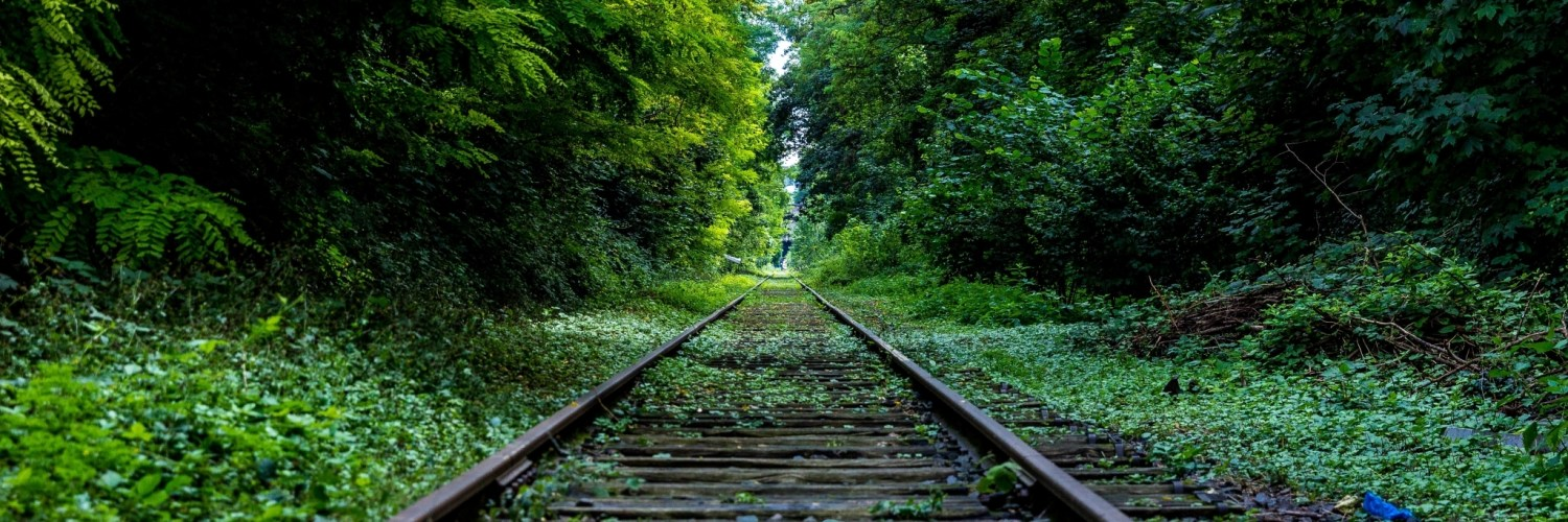 nature forest industry rails - Des comptes Facebook piratés et piratables