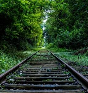 nature forest industry rails - Journée épuisante d'un développeur multimédia