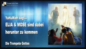 zwei Zeugen in Offenbarung 11