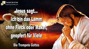 jesus das lamm gottes